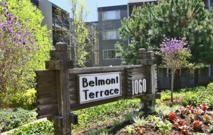 Belmont Terrace