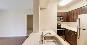 Foster's Landing - Foster City CA | Recent Project Gallery | G.A. Higgins, Inc. | 925-969-1907