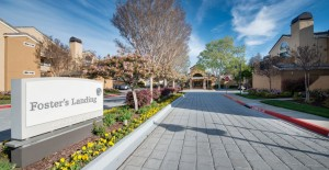 Foster's Landing - Foster City CA   Recent Project Gallery   G.A. Higgins, Inc.   925-969-1907